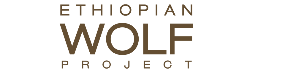 Ethiopian Wolf Project